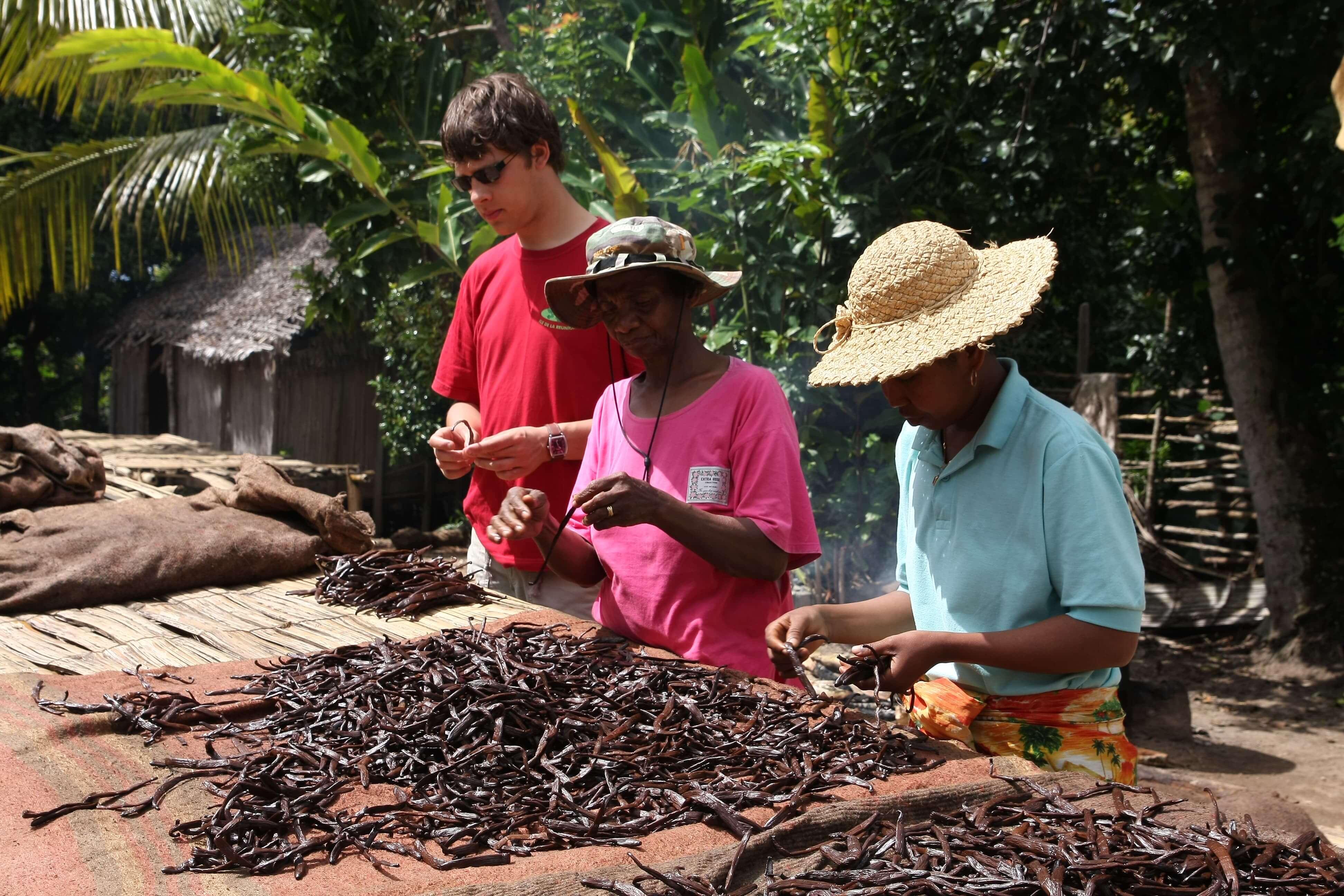 Arnaud Sion expert en Gousse de Vanille de Madagascar