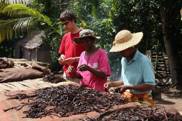Acheter la meilleure vanille au Comptoir de Toamasina