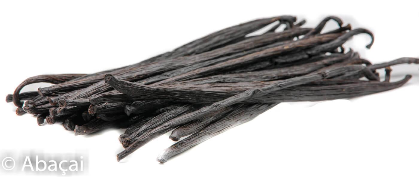 Vanille de Papouasie variété Tahitensis