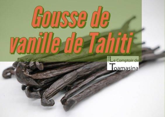 Tahiti Vanille, Vanille Tahitensis