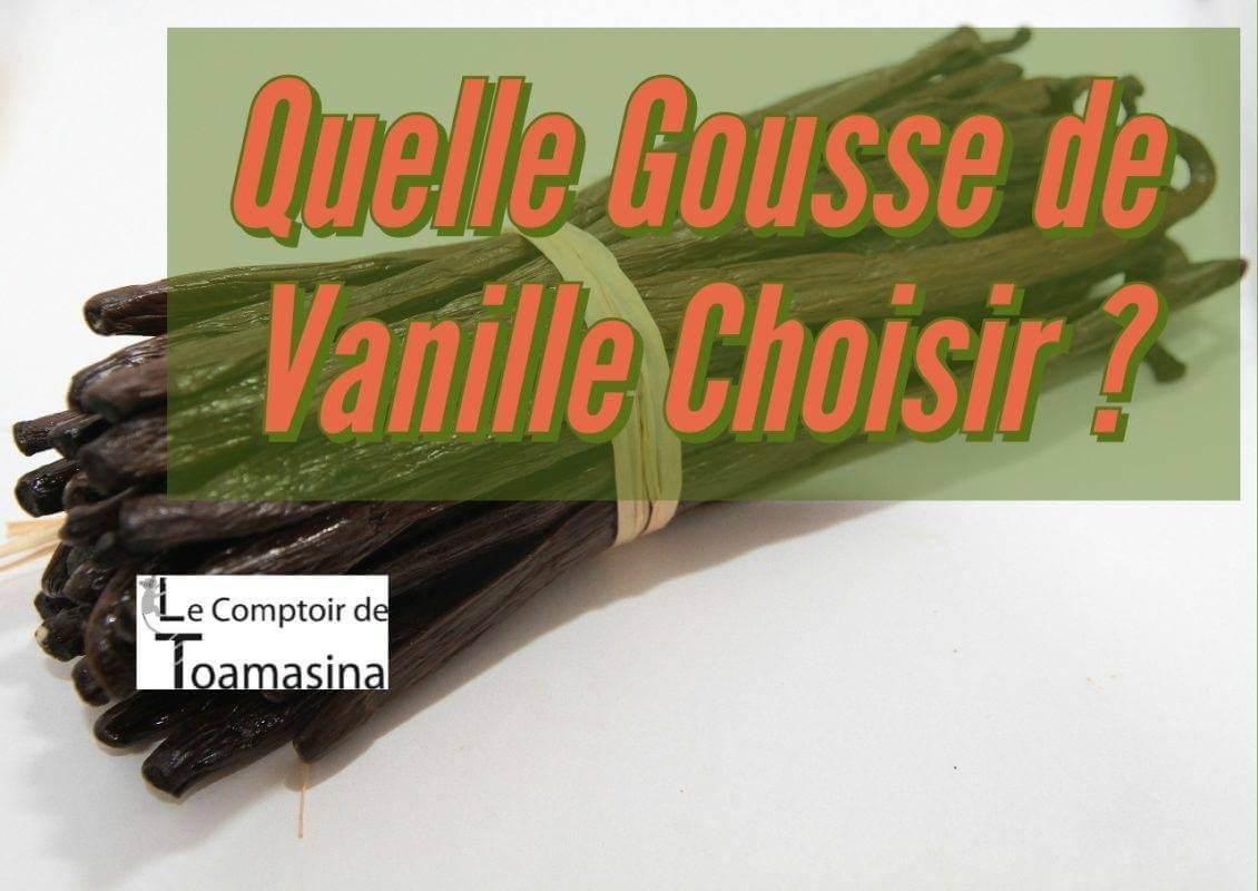 Quelle Gousse de Vanille Choisir Madagascar Tahiti, Papouasie et du Monde