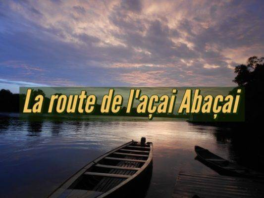 La route de l'açai Abaçai