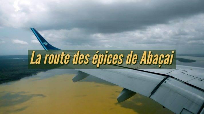 Pourquoi choisir un mélange d'épices du Brésil Abaçai ou les mélanges d'épices du Comptoir de Toamasina?