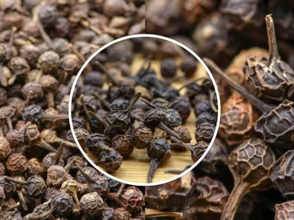 Poivre cubèbe - poivre à queue - Achat, vente, usage et recettes