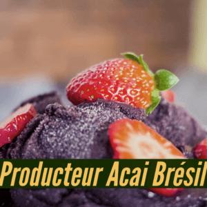 Producteur acai Brésil acheter l'açai abaçai