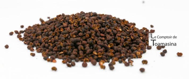 plantation-poivre-timut-nepal
