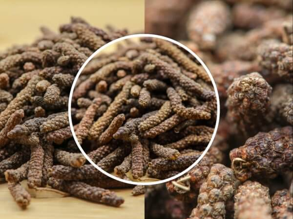 Poivre long de Java - Achat et vente au meilleur prix au kilo