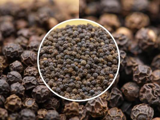 Poivre Noir de Tellicherry - Acheter le meilleur poivre noir au monde au meilleur prix