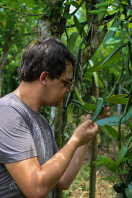 Arnaud chez un producteur de gousses de vanille au Brésil