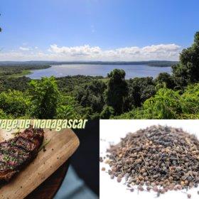 Acheter du poivre sauvage de Madagascar