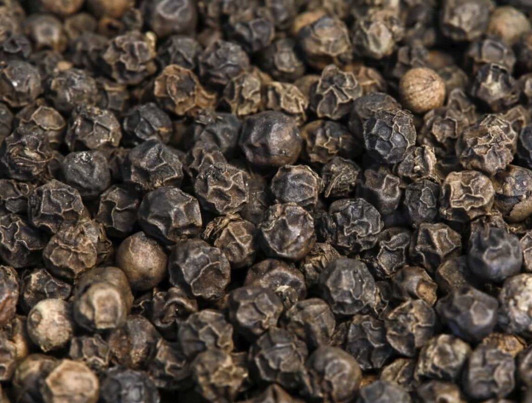 Poivre Noir du Brésil - Acheter du Poivre du Rio Tocantins, Espirito Santo, Bahia en direct du producteur-min